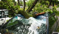 storm autoschade