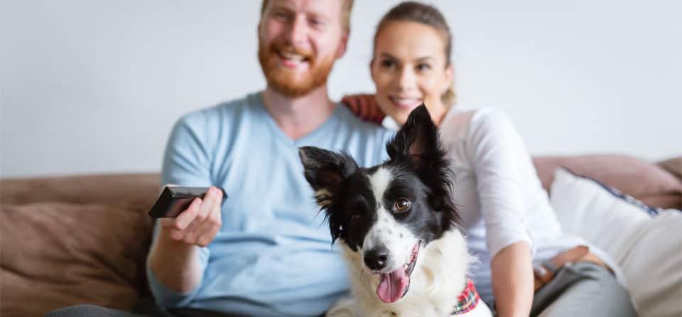 9 tips waarmee je makkelijk bespaart op internet, tv en bellen